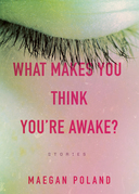 What Makes You Think You're Awake?