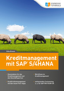 Kreditmanagement mit SAP S/4HANA