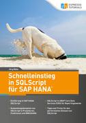 Schnelleinstieg in SQLScript für SAP HANA