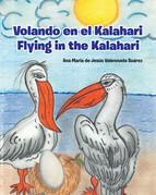 Volando en el Kalahari - Flying in the Kalahari