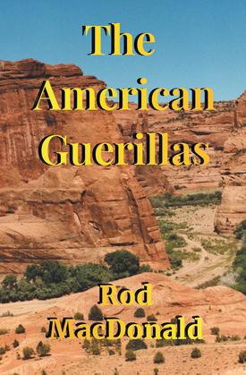 The American Guerillas