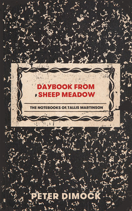 Daybook from Sheep Meadow