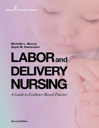 Labor and Delivery Nursing, Second Edition