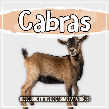 Cabras: ¡Descubre fotos de cabras para niños!