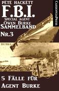 5 Fälle für Agent Burke - Sammelband Nr. 3 (FBI Special Agent)