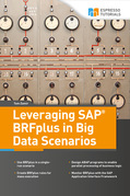 Leveraging SAP BRFplus in Big Data Scenarios