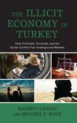 The Illicit Economy in Turkey