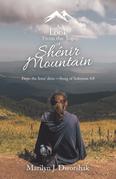 A Look from the Top  of Shénir Mountain