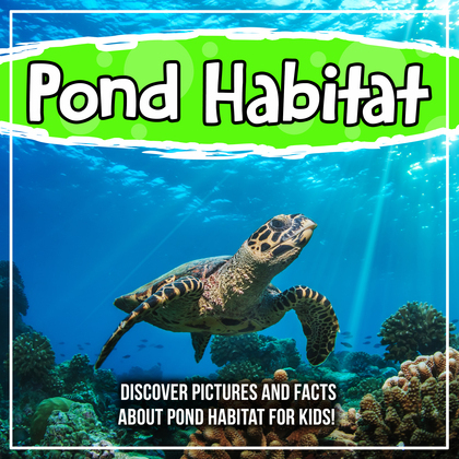 Ocean Habitat: Discover Pictures and Facts About Ocean Habitat For Kids!