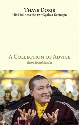 A Collection of Advice