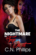 The Nightmare on Trap Street