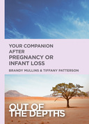 Out of the Depths: Your Companion after Pregnancy Or Infant Loss