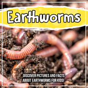 Earthworms: Discover Pictures and Facts About Earthworms For Kids!