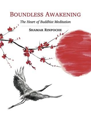 Boundless Awakening