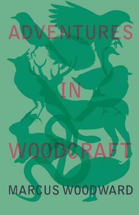 Adventures in Woodcraft