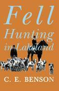 Fell Hunting in Lakeland