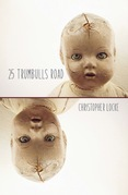 25 Trumbulls Road