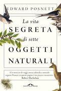 La vita segreta di sette oggetti naturali