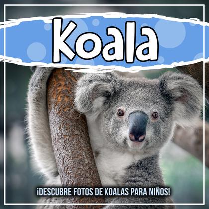 Koala: ¡Descubre fotos de koalas para niños!