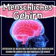 Menschliches Gehirn: Entdecken Sie Bilder und Fakten über das menschliche Gehirn für Kinder! Ein Anatomiebuch für Kinder