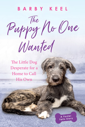 The Puppy No One Wanted
