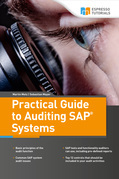 Practical Guide to Auditing SAP Systems