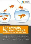 SAP S/4HANA Migration Cockpit – Datenmigration mit LTMC und LTMOM