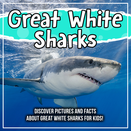 Great White Sharks: Discover Pictures and Facts About Great White Sharks For Kids!