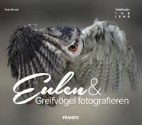 Eulen & Greifvögel fotografieren