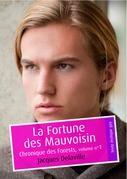 La Fortune des Mauvoisin (érotique gay)