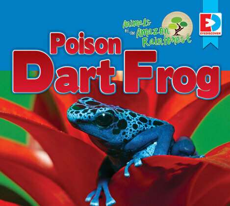 Animals of the Amazon Rainforest: Poison Dart Frog
