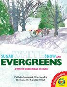 Sugar White Snow and Evergreens