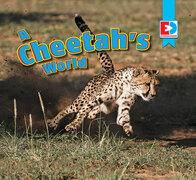 A Cheetah's World