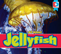 All About Jellyfish
