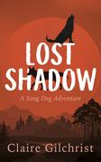 Lost Shadow