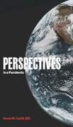 Perspectives in a Pandemic