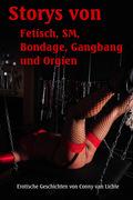 Storys von Fetisch, SM, Bondage, Gangbang und Orgien