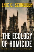 The Ecology of Homicide