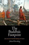The Buddha's Footprint