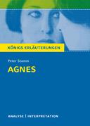Agnes von Peter Stamm. Textanalyse und Interpretation mit ausführlicher Inhaltsangabe und Abituraufgaben mit Lösungen.