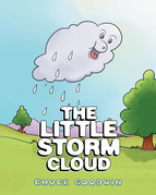 The Little Storm Cloud