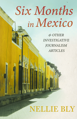 Six Months in Mexico - and Other Investigative Journalism Articles