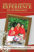 The Black Adoption Experience an Anthology