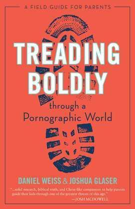 Treading Boldly through a Pornographic World