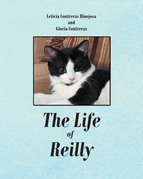 The Life of Reilly