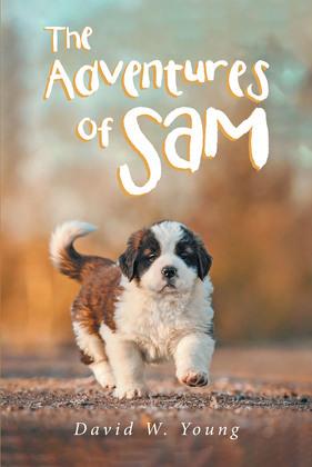 The Adventures of Sam