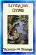 LITTLE JOE OTTER - an animal story for children