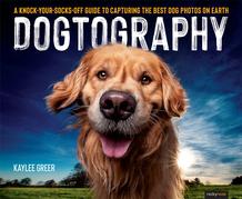 Dogtography