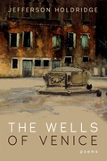 The Wells of Venice