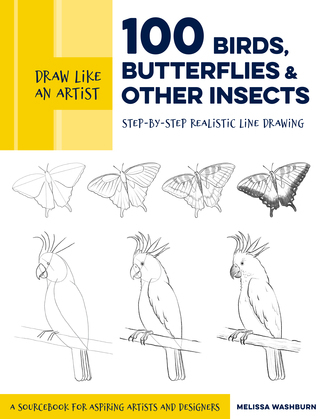 Draw Like an Artist: 100 Birds, Butterflies, and Other Insects